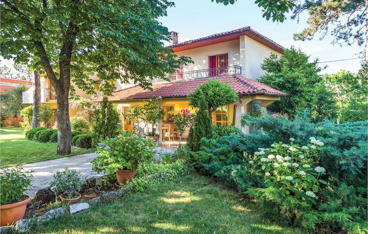 Beautiful home in Svetvincenat with WiFi and 1 Bedrooms