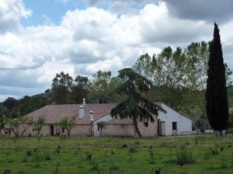 Casa de los Gallos