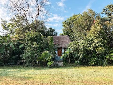 Comforthut, Cenote San Ignacio Boutique Hotel
