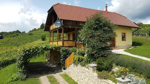 Country House Mirt with two Bedrooms and Vineyard View
