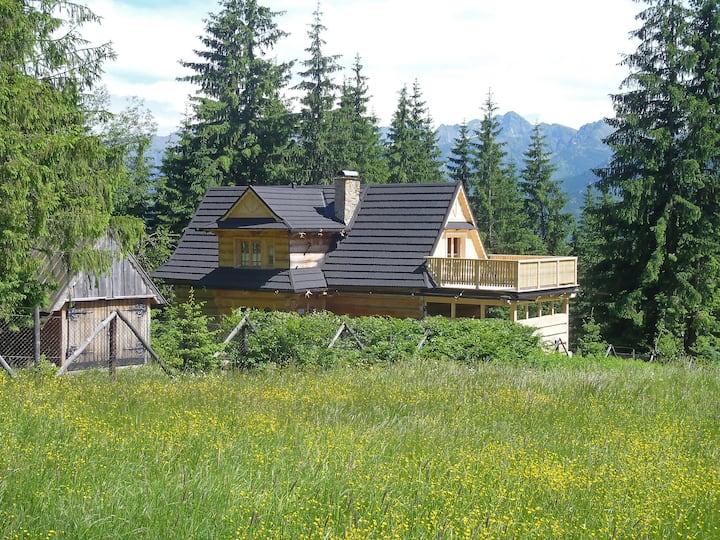 Apartment Willa Czekan in Zakopane