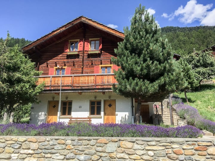Chalet Ankie for 12 persons.