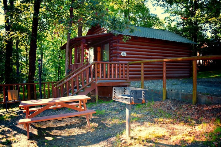 Cozy Cabin with Fire Pit pavilion near boat ramp
