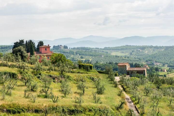 Tenuta Cona at Toscana