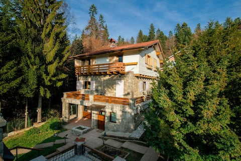 ☆ Chalet Titulescu | 4 Bd | By MontePalazzo ☆