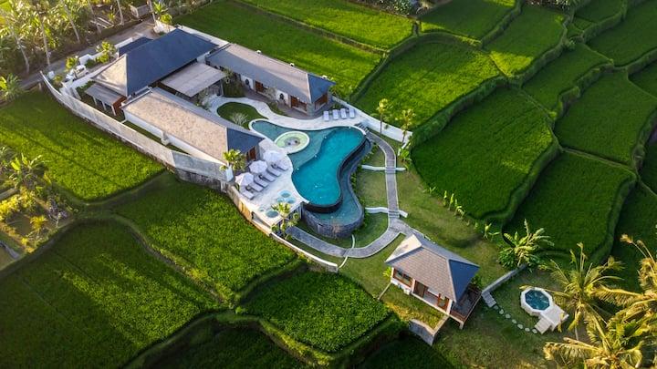 70% Promo - Brand New 6BDR Ricefield View Villa