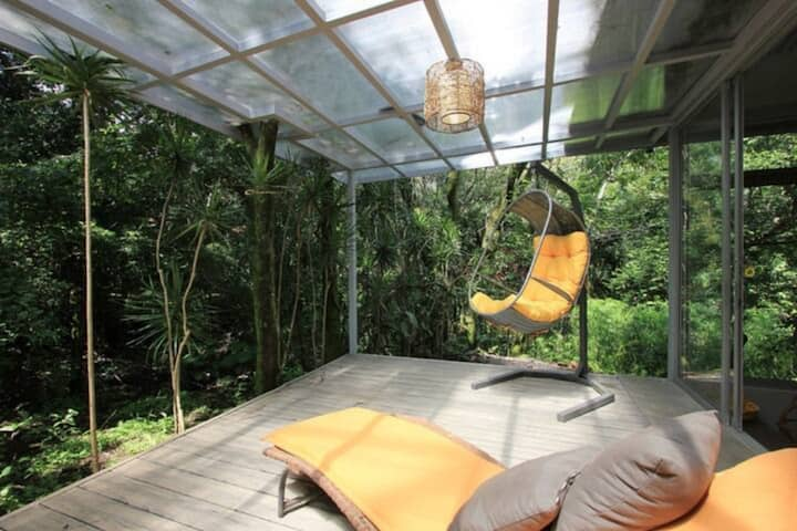 Relaxing Sound of the River, all the Birds, Squirrels and Many Tropical Plants