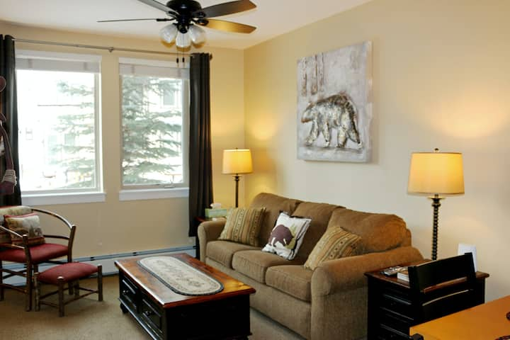 Third-Floor Ski-Condo w/ a Gas Fireplace, Kitchenette, & Shared Hot Tub
