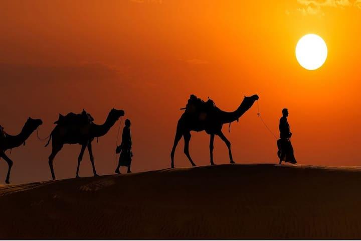 Swiss Tents at KF Resort Jaisalmer