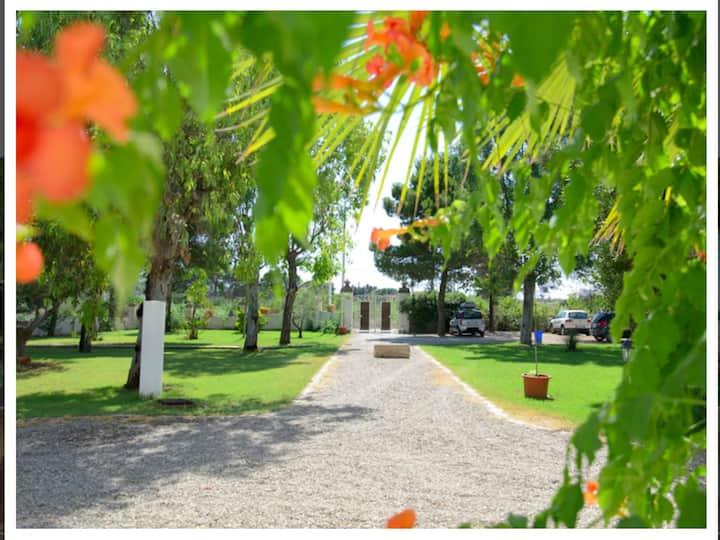 Appartement de 2 chambres à Campomarino, avec magnifique vue sur la mer, piscine partagée, jardin clos - à 500 m de la plage