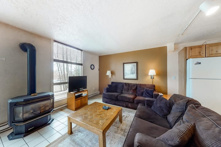 Mountain Condo Near Lake w/Free WiFI, Private Washer & Dryer, & Gas Fireplace!