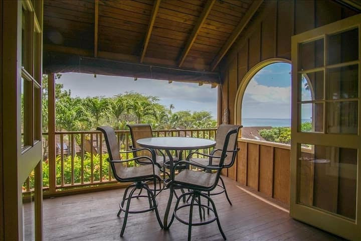 Tropical Oceanview Condo w/Shared Pool, Free WiFi, Private Washer/Dryer, Lanai