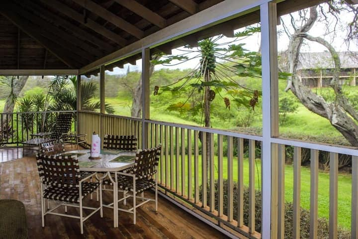 Lovely Tropical Condo w/Shared Pool, Private Washer and Dryer, Free WiFi, Lanai