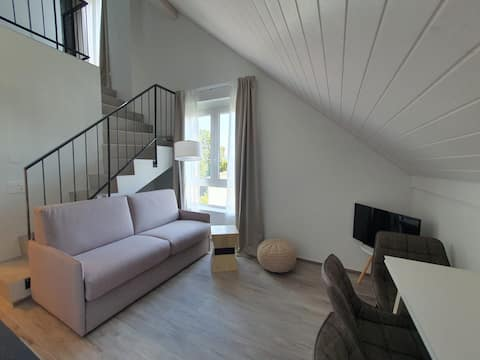 Apartment a stone's throw from Brugg-FHNW (W APARTMENT 28)