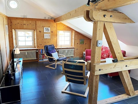 Alpine style penthouse, 60m2 for 2p, with garage