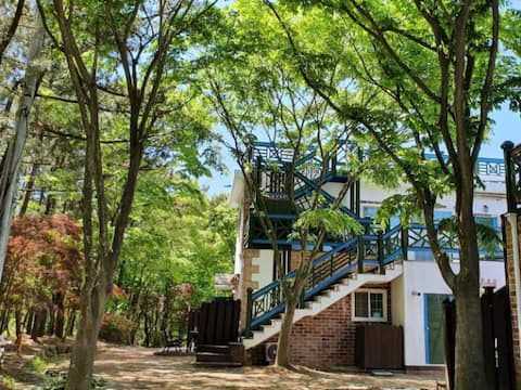 싱그러운 소나무 숲과 푸른 바다가 있는 자연에서 휴가를 즐길 수 있는 오션 20B형 객실