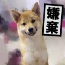 Användarprofil för 氵又