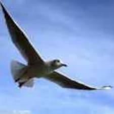 海燕 felhasználói profilja