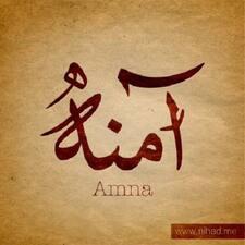 Профиль пользователя Amna