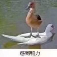 天昂 User Profile