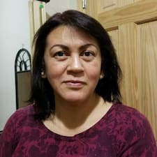 Cindy Johanna User Profile