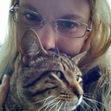 Beverly felhasználói profilja
