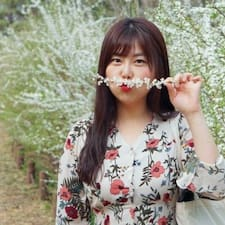 Perfil do usuário de 보영