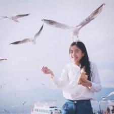 志东 User Profile