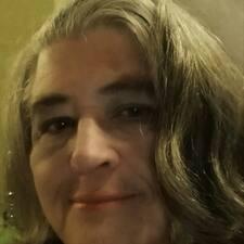 Vigdis User Profile