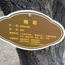 王叶 felhasználói profilja