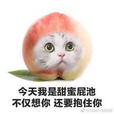 Profil utilisateur de 梓霖