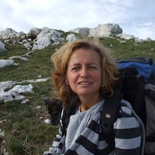 Profil korisnika M. Elisabetta