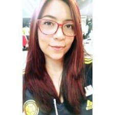 Catia User Profile