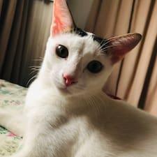 Profil korisnika Yihong