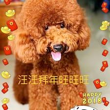 旭东 felhasználói profilja
