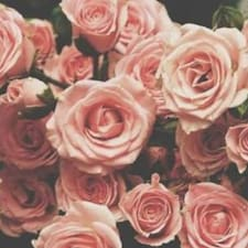 Perfil do utilizador de Rose