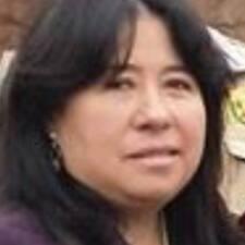 Maria Teresa Brugerprofil