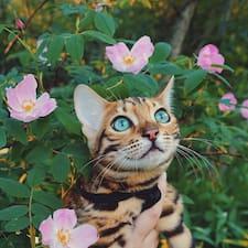 Cats的用戶個人資料