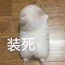 晴 Kullanıcı Profili