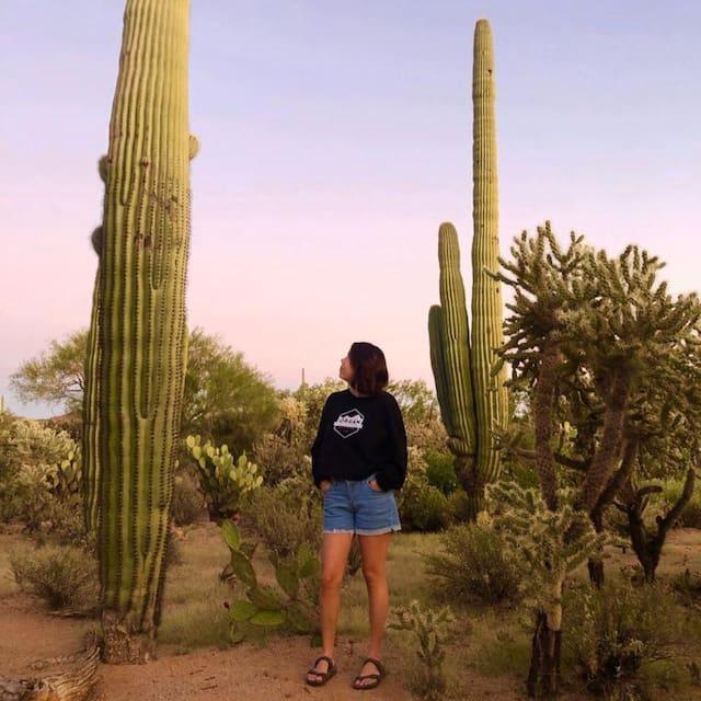 Guidebook for Albuquerque