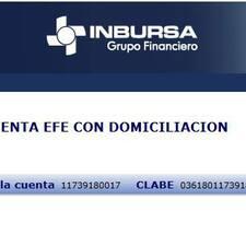 Perfil de usuario de Figueroa