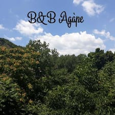 B&B Brugerprofil