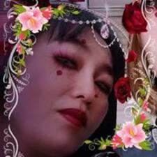 Shiki User Profile