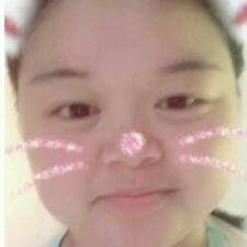 Profil Pengguna Yc