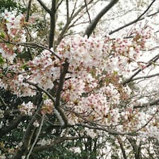 Nutzerprofil von Sakura