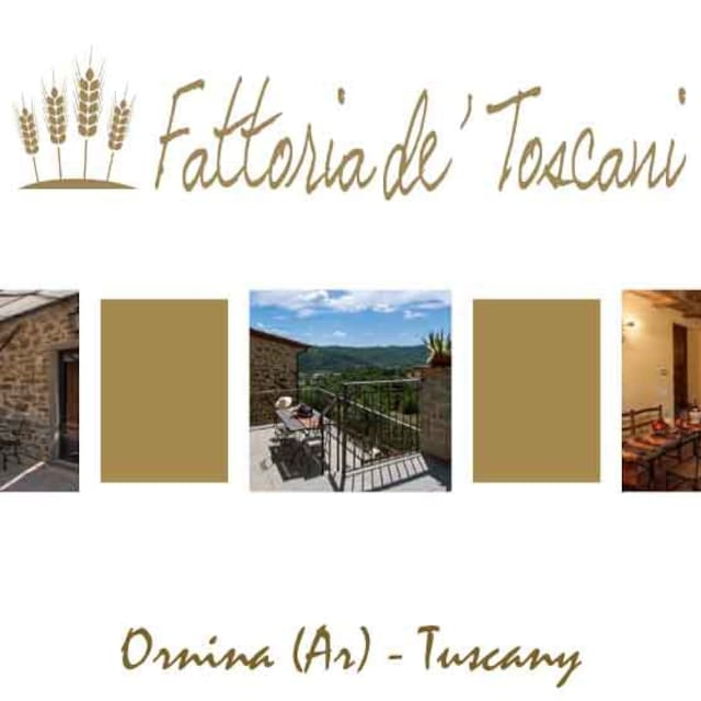 Guidebook for Castel Focognano