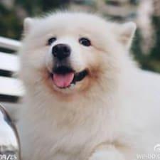 Nutzerprofil von Xiayue