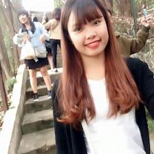 Lan felhasználói profilja