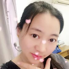 Dongying User Profile