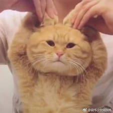 盈伊 User Profile